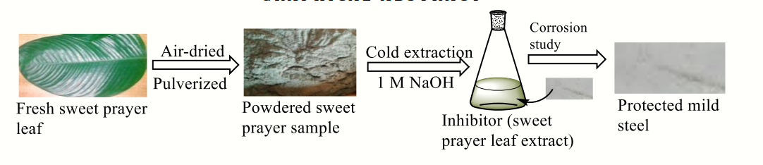 Equilibrium and Thermodynamic Characteristics of the Corrosion Inhibition of Mild Steel Using Sweet Prayer Leaf Extract in Alkaline Medium